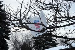 Plastic Bag Blows by Kate Ter Haar