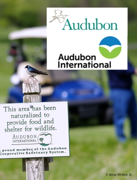 Audubon International: Which of these logos looks familiar? Audubon International is a certifier of golf courses under dubious standards, using the well-known name and bird logo, despite no affiliation with the Audubon Society.